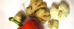 Susipažinkime iš arčiau: pipiras, česnakas, imbieras