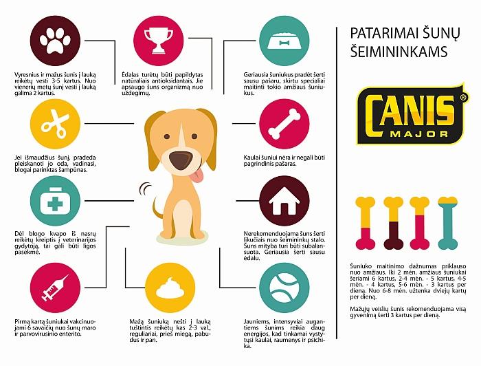 Patarimai sunu seimininkams_infografikas