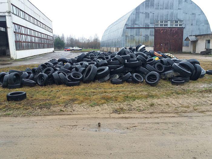 Miškininkai iš miškų surinko 700 tonų atliekų – vežė net 300 sunkvežimių